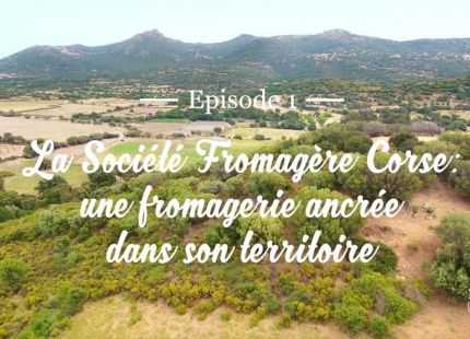 Emilien fromages video societe fromagere corse episode 1