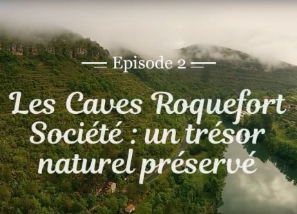 Caves roquefort societe un tresor naturel preserve