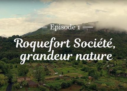 Roquefort Societe grandeur nature